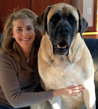 Angela Erickson-Greco, DVM certified veterinary acupuncturist and in animal chiropractic